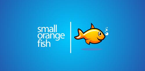 small-orange-fish
