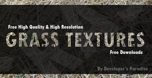 grass-texture-header