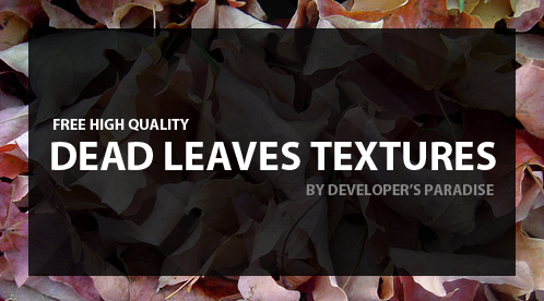 dead-leaves-textures-header